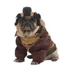 B a carnavalskleding feest honden