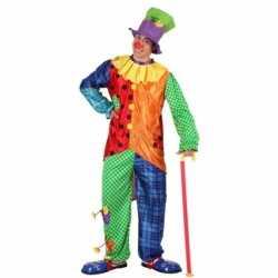 Gekleurd clowns kleding feest mannen