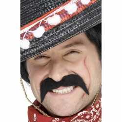 Plak snorren feest een mexicaan