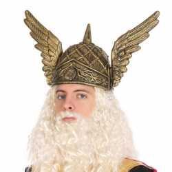 Viking verkleed helm feest heren